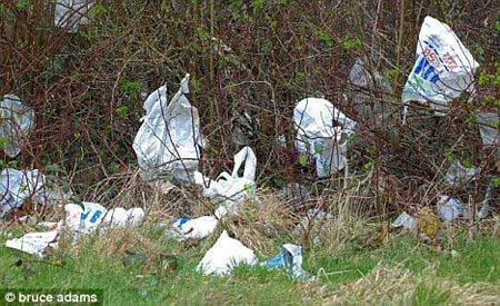 陆地上越来越多的塑料垃圾