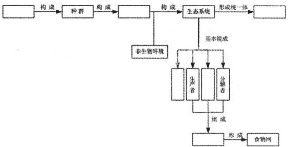 七年级变量之间的关系结构图