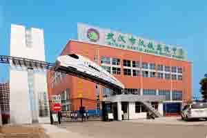 湖北省武汉市汉铁高级中学报告高中英语图片