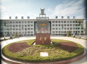 河南鹤壁市综合化学_学科网高考资讯频道高中目录课本高中图片