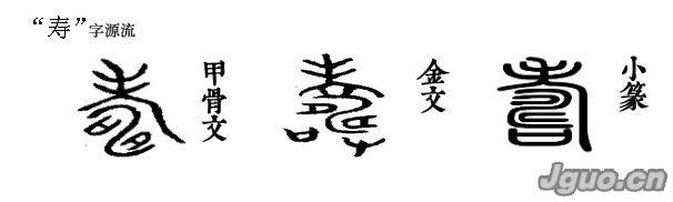 寿字源流   金文的寿字有两种写法。第一种写法,以老字的省笔作形符,表示老年人,即表示寿;另外两部分字形作声符。这两部分字形合起来为古畴字,指已耕作过的田地。田地里沟渠纵横,有长的意思。所以寿以畴作声符并会意。   金文寿字的第二种写法,是在前一种写法的基础上另加了口和又,口字像酒器;又字像手,为老者举杯祝寿。小篆与楷书的字体,仍然是手捧酒器为老者祝寿的意思。本义为年纪老,长寿。   简体字寿,应该看作是个会意字。由老字的省笔和寸字组合。