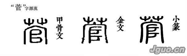 菅字源流   小篆的菅字是个上下结构的形声字。上面的草字头做形符,表示这个字跟花草树木有关。下面的官字是声。有人往往误写为管字,误读为guan。   菅字的本义很简单,指一种多年生的草本植物,叶子细长而尖,开绿色花,结褐色颖果,茎长二三尺,秋天开白色的花。这种草,可作造纸、刷子等原料。   菅字的用处不多,组成的词汇是草菅,比喻轻视。人们常说的成语草菅人命,指把人命看作是毫无价的野草。指轻视人的生命,任意伤害,随意杀戮。   菅字也作姓氏用。