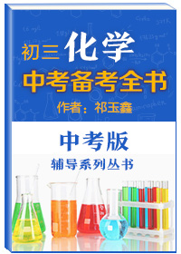 中考辅导系列丛书•初三化学中考备考全书