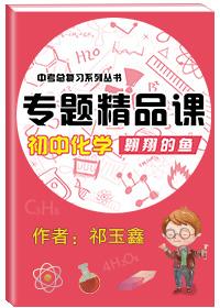中考总复习系列丛书·初中化学专题精品课