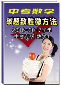 2016-2017学年中考专版微刊(数学1)