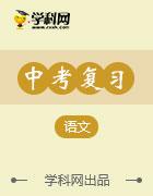 2017春《中考新航线》福建专版语文教用PPT课件