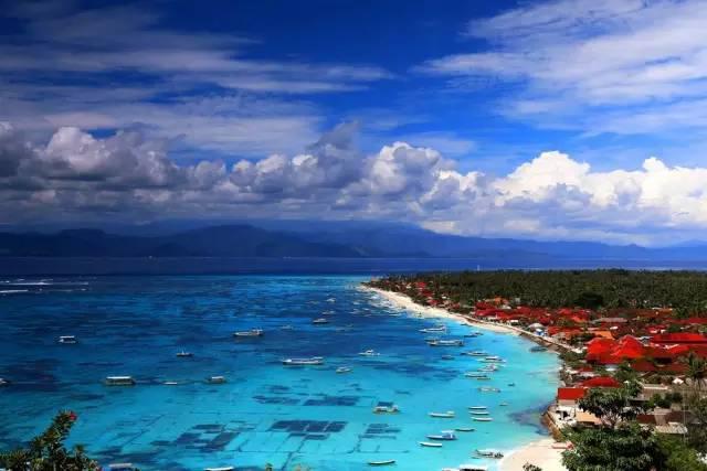 美术海边椰树风景图片